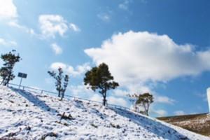 雪の平尾台 (5)