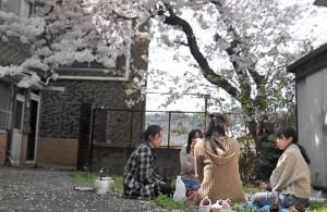 お花見会 (6)