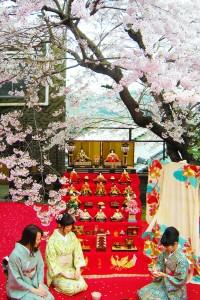 お花見茶会 (3)