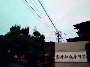 虹 (5)