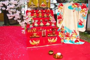 お花見茶会 (2)